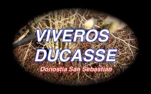 VIVEROS DUCASSE Donostia San Sebastián ©