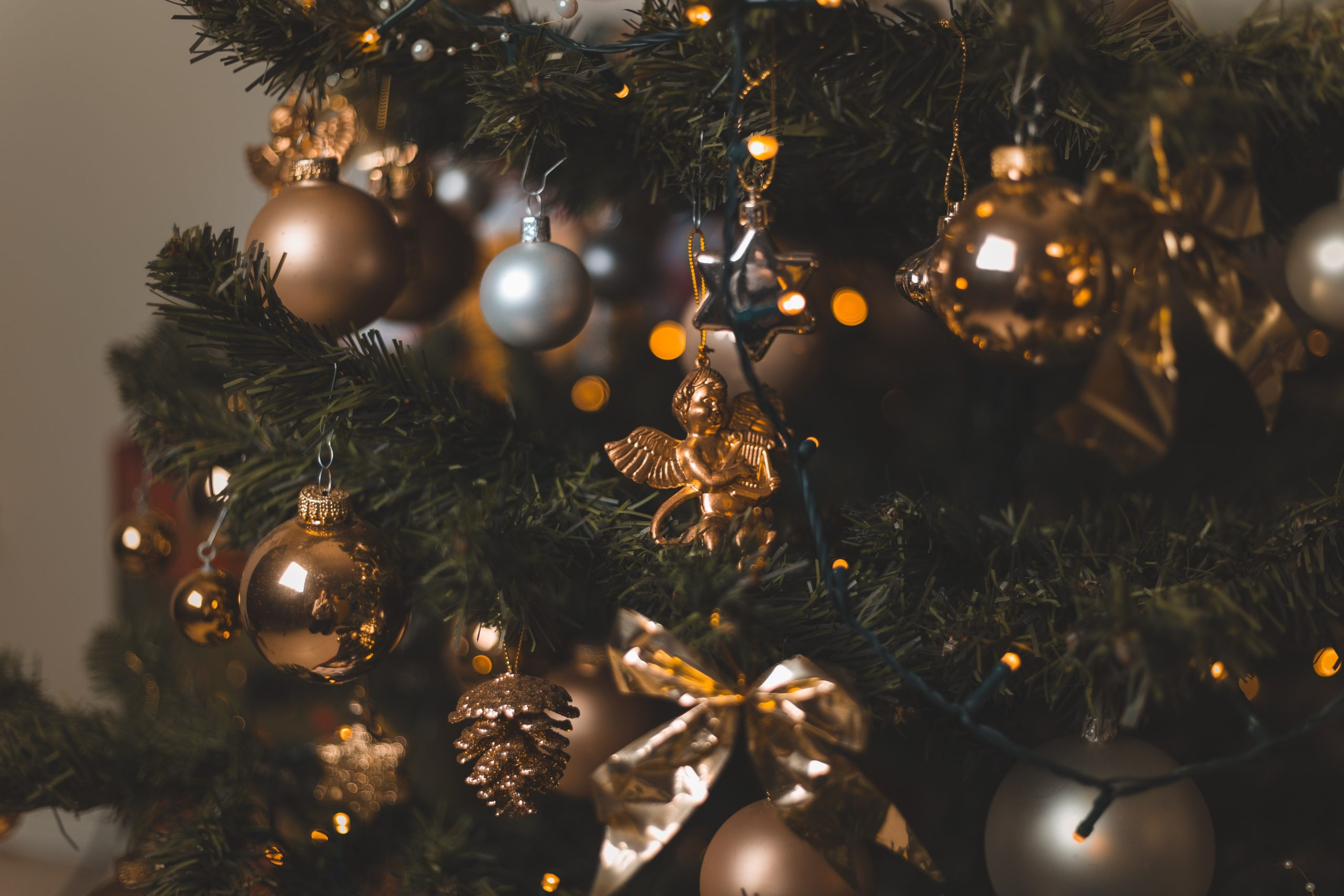christmas-tree-5758765