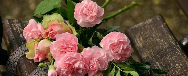 flor vortada